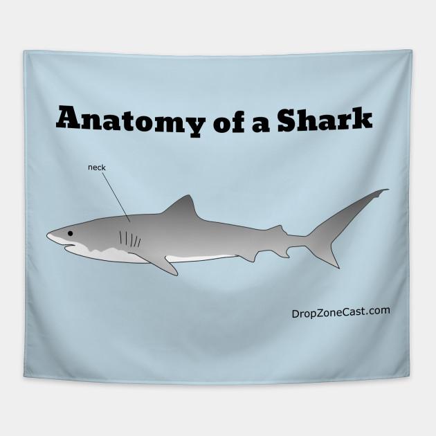 Anatomy of a Shark - Anatomy Of A Shark - Tapestry | TeePublic