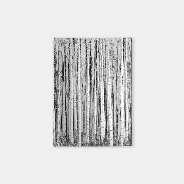 aspen lines