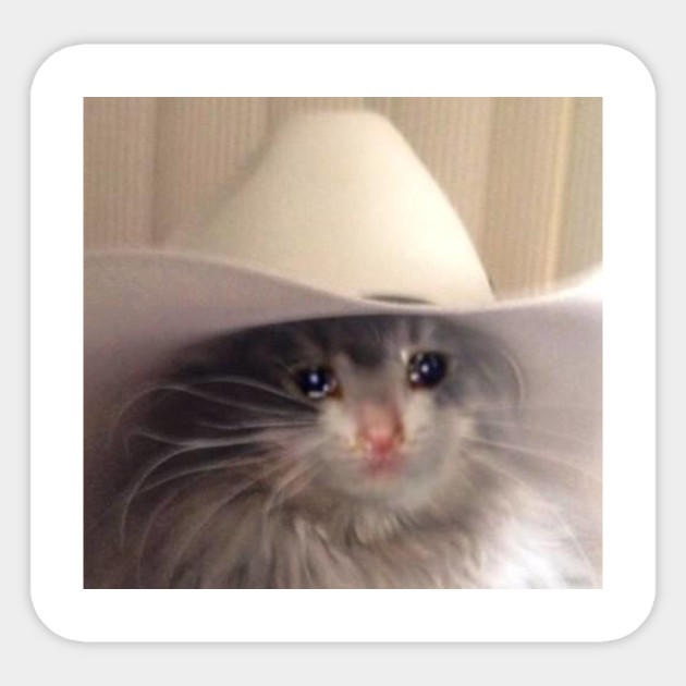 Sad Cowboy Cat Meme - Sad Cat - Pegatina
