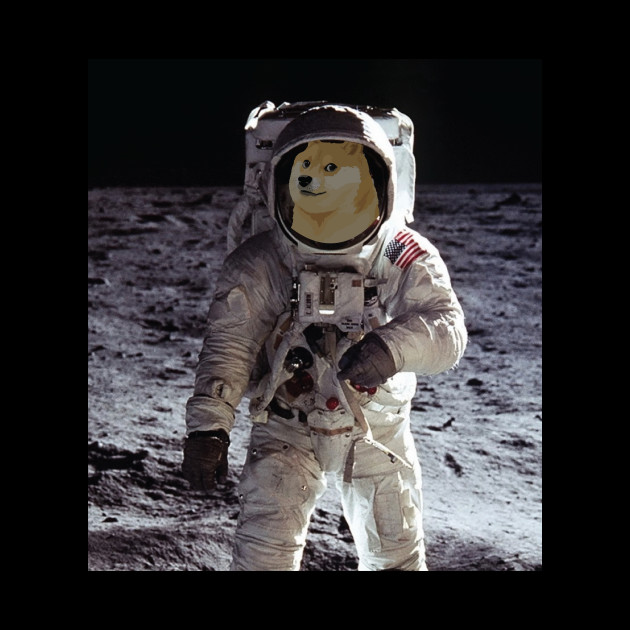 cool astronaut pictures