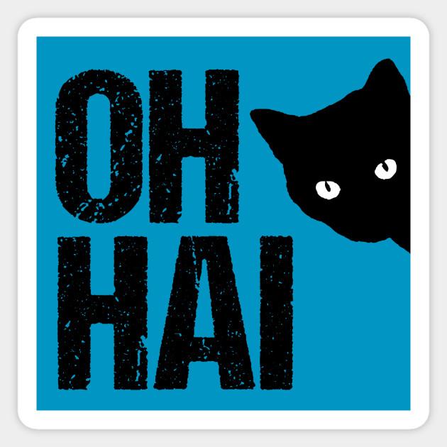 Funny Cat Meme Oh Hai Cat Memes Sticker Teepublic