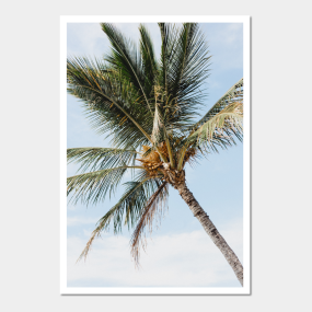 tropical palm trees posters and art prints teepublic