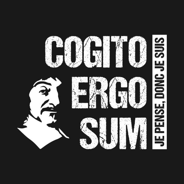 Image result for descartes cogito ergo sum