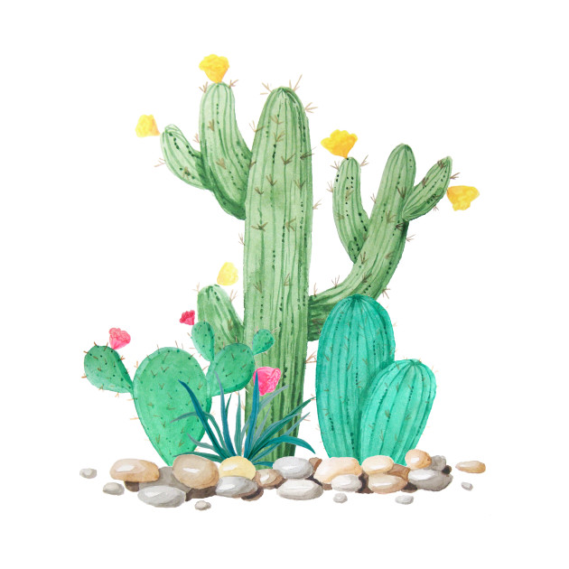 Image result for watercolor cactus