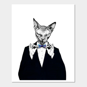 Naked Cat Posters and Art Prints   TeePublic