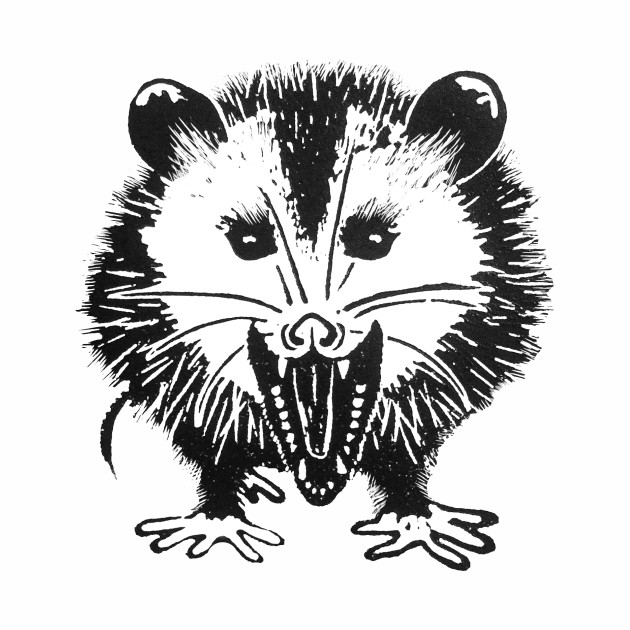 Mi'sippi Possum