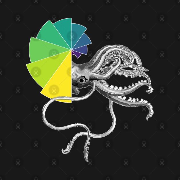 Ammonite Peacock Shell | Black Red Yellow Bar Chart Black