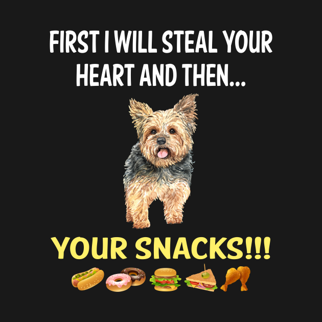Steal Heart Yorkshire Terrier 34