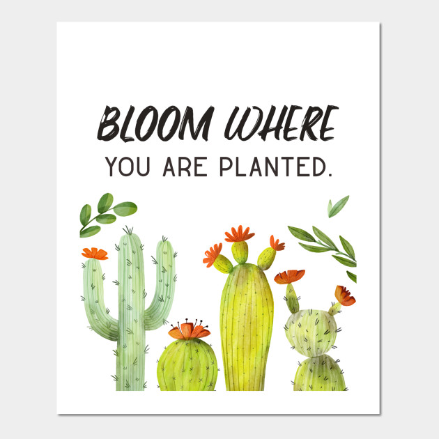 cactus flower art motivational quotes cactus posters and art