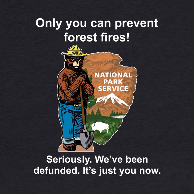Only you can prevent forest fires