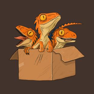 Free raptors t-shirts