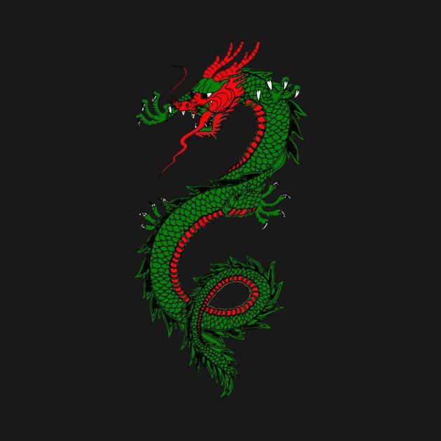 Dragon Print Art Wear