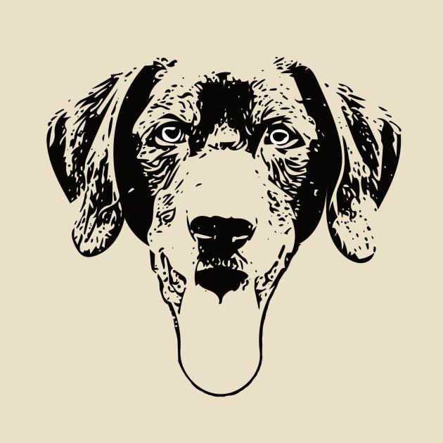 Black Lab Labrador Retriever