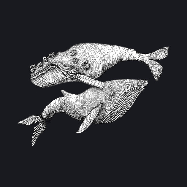A Couple of Whales