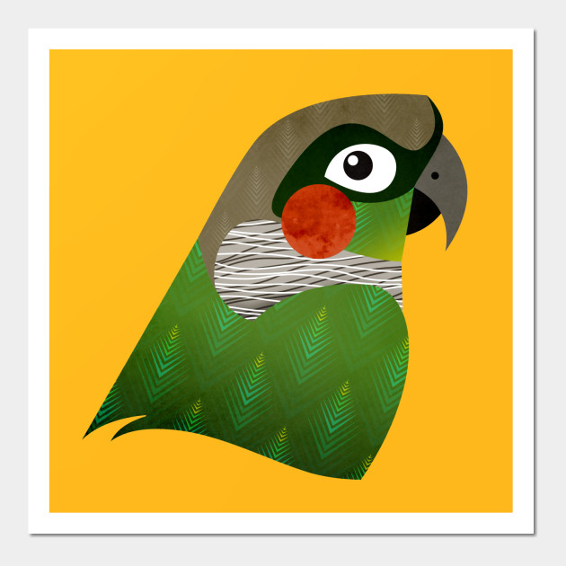Green Cheek Conure - Parrot - Wall Art | TeePublic
