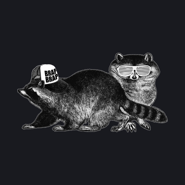 Raccoons: Nature's Teenagers