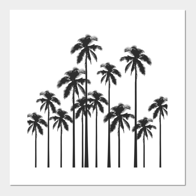 black and white exotic tropical palm trees palm trees posters