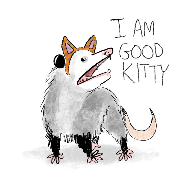 I Am Good Kitty Opossum T Shirt Teepublic