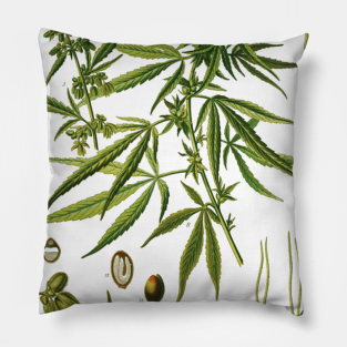 Evergreen Cuscini.Cuscini Cannabis Clothing Teepublic It