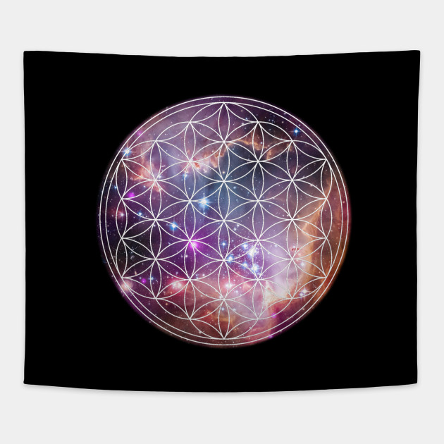 Sacred Geometry The Flower Of Life Meaning - Flowers Healthy