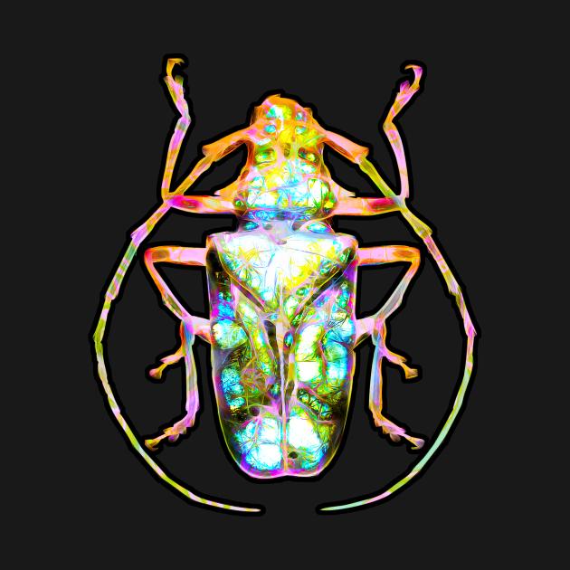Marble Stone Beetle