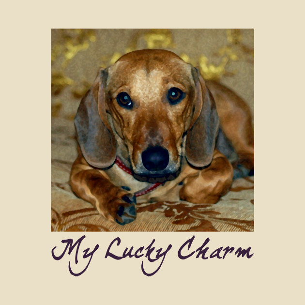 My Lucky Charm Dachshund Dog