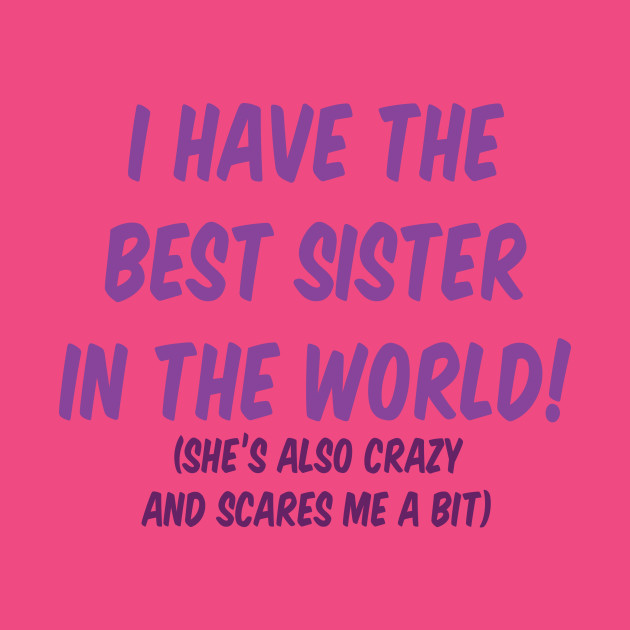 I Have The Best Sister In The World Sister Pillow Teepublic