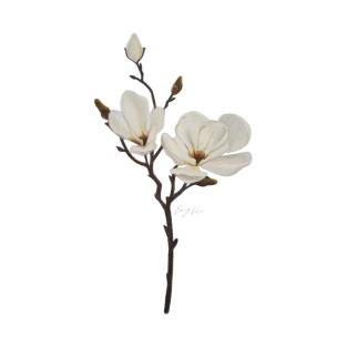 Magnolia T Shirts Teepublic