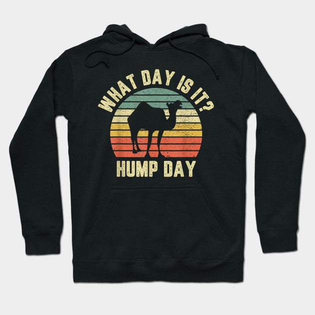 What Day Is It Hump Day Hoodie
