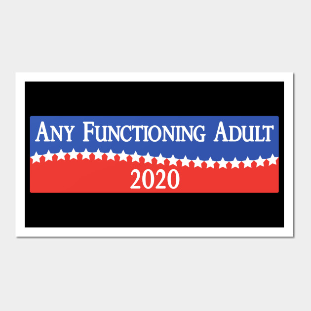 Any Functioning Adult 2020 - Funny Campaigning