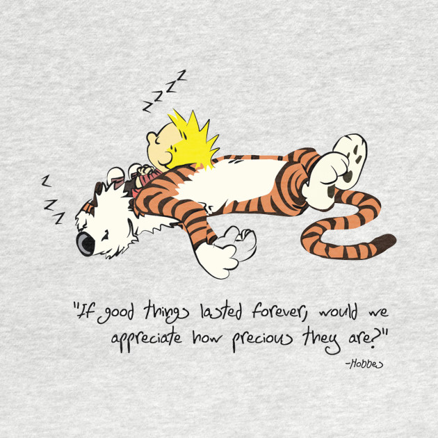 Calvin And Hobbes Qoute