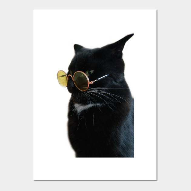 Vintage Black Cat Style Cats Gift