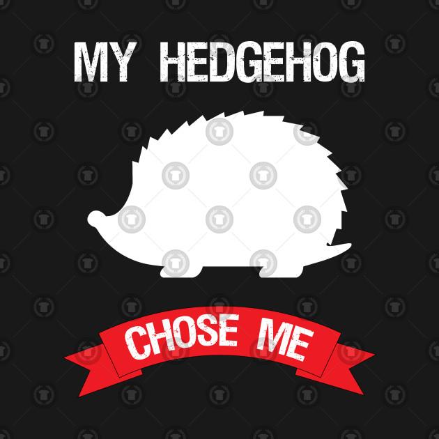 My Hedgehog Chose Me
