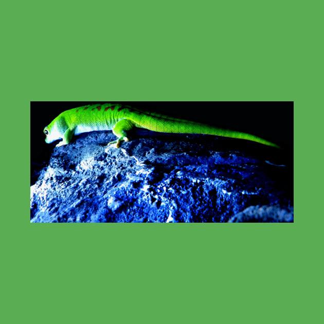Gecko Lizard Fun