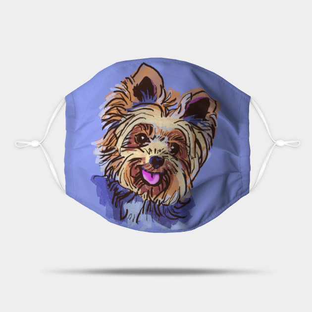 The Yorkie Love of My Life