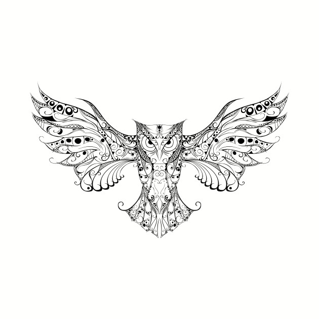 OWL – Go find your wings and fly