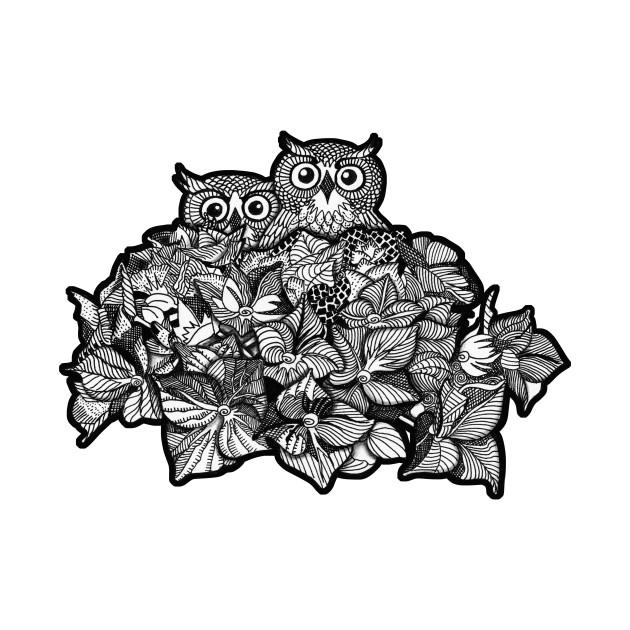 Owls Safe Place