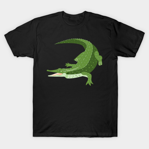 070983c0e61 Funny Crocodile Shirt - Crocodile Gift Shirt For You