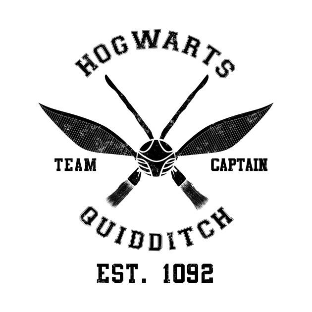 Hogwarts Quidditch Team Captain - Hogwarts