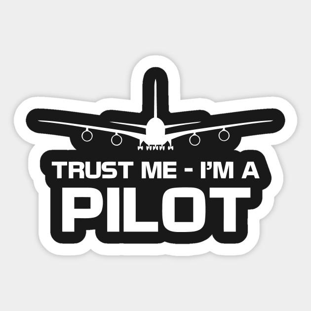 Trust Me I/'m A Pilot Kids Printed Hoodie