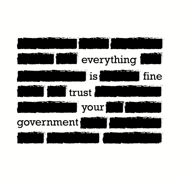 conspiracy theory trust your government funny gift