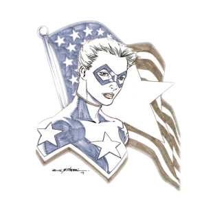Lady America Art Shirt t-shirts