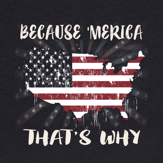 Because 'Merica That's Why American Flag Gift