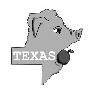 Funny Texas TShirts  TeePublic