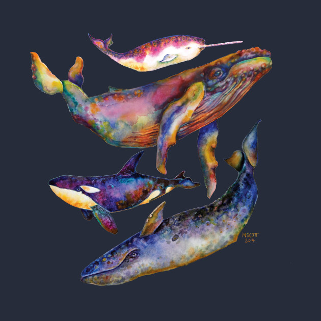 Four Whale Quartet - A Quartet of Whales
