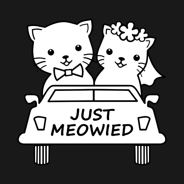 Funny Just Meowied Married Cat Lover