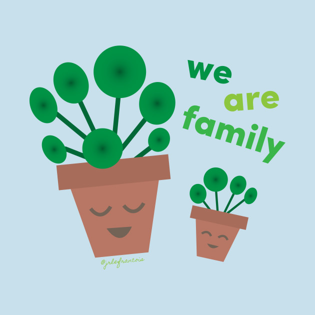 We Are Family Pilea peperomioides