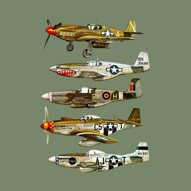 North American P-51 Mustang WW2 Fighter