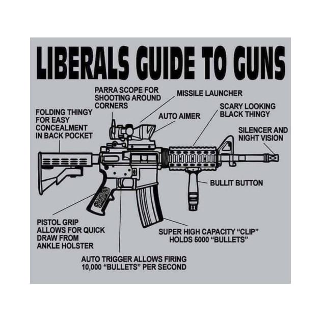 AR-15 Liberal Guide to Guns