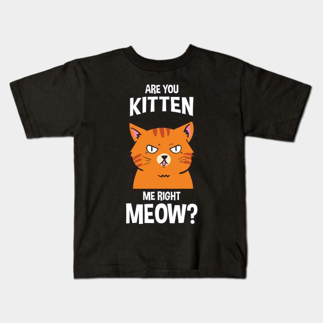 Are You Kitten Me Right MeowSWEATSHIRT Funny Animal Cat Joke Gift